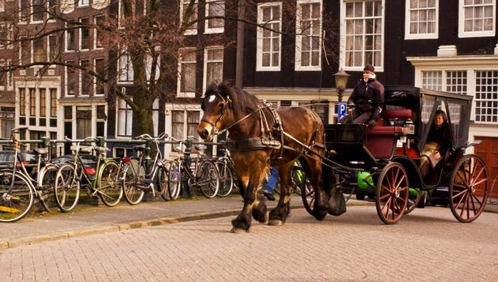 Valentine's day things to do in Amsterdam