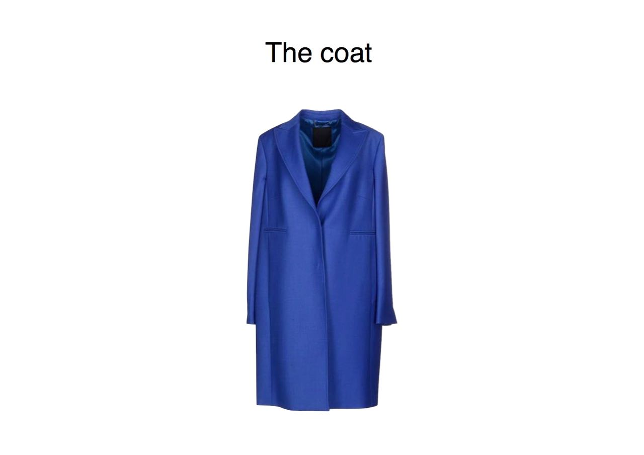 steal of the day les copains coat (1)
